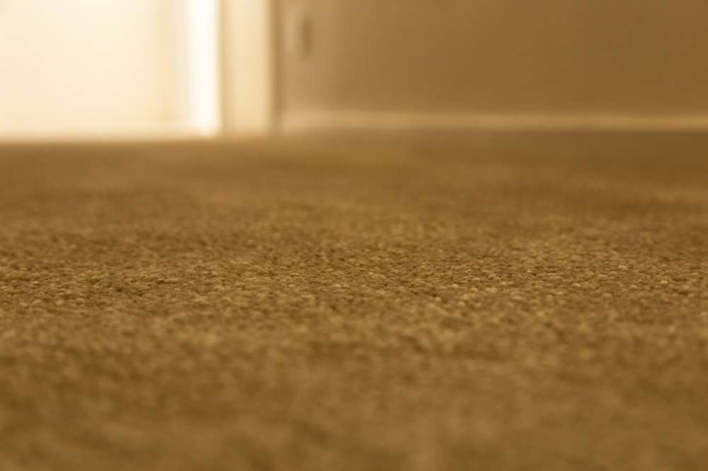 Carpets by Edwards Flooring in Bromley (2)