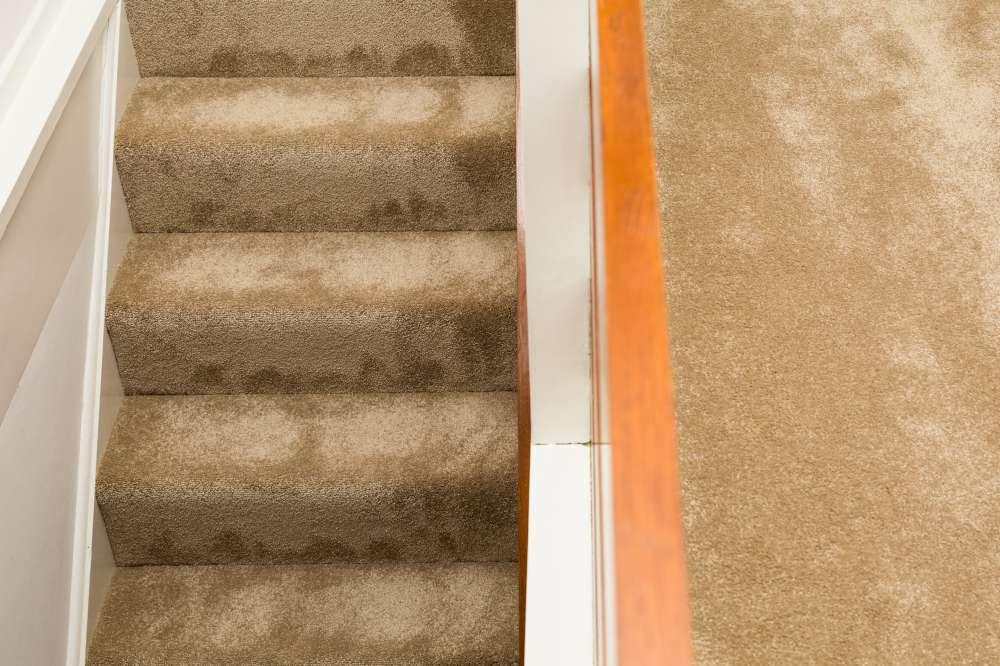 Carpets by Edwards Flooring in Bromley (3)